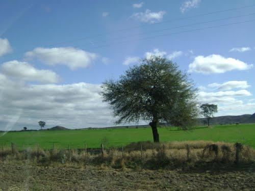 El wallpaper de windows XP!!!!