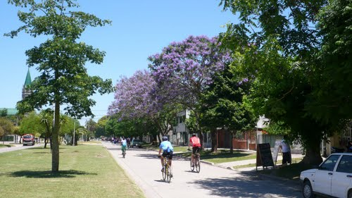 Spring at Ramallo